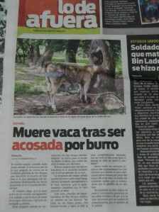 """Diario """"Mi Chero"""""""